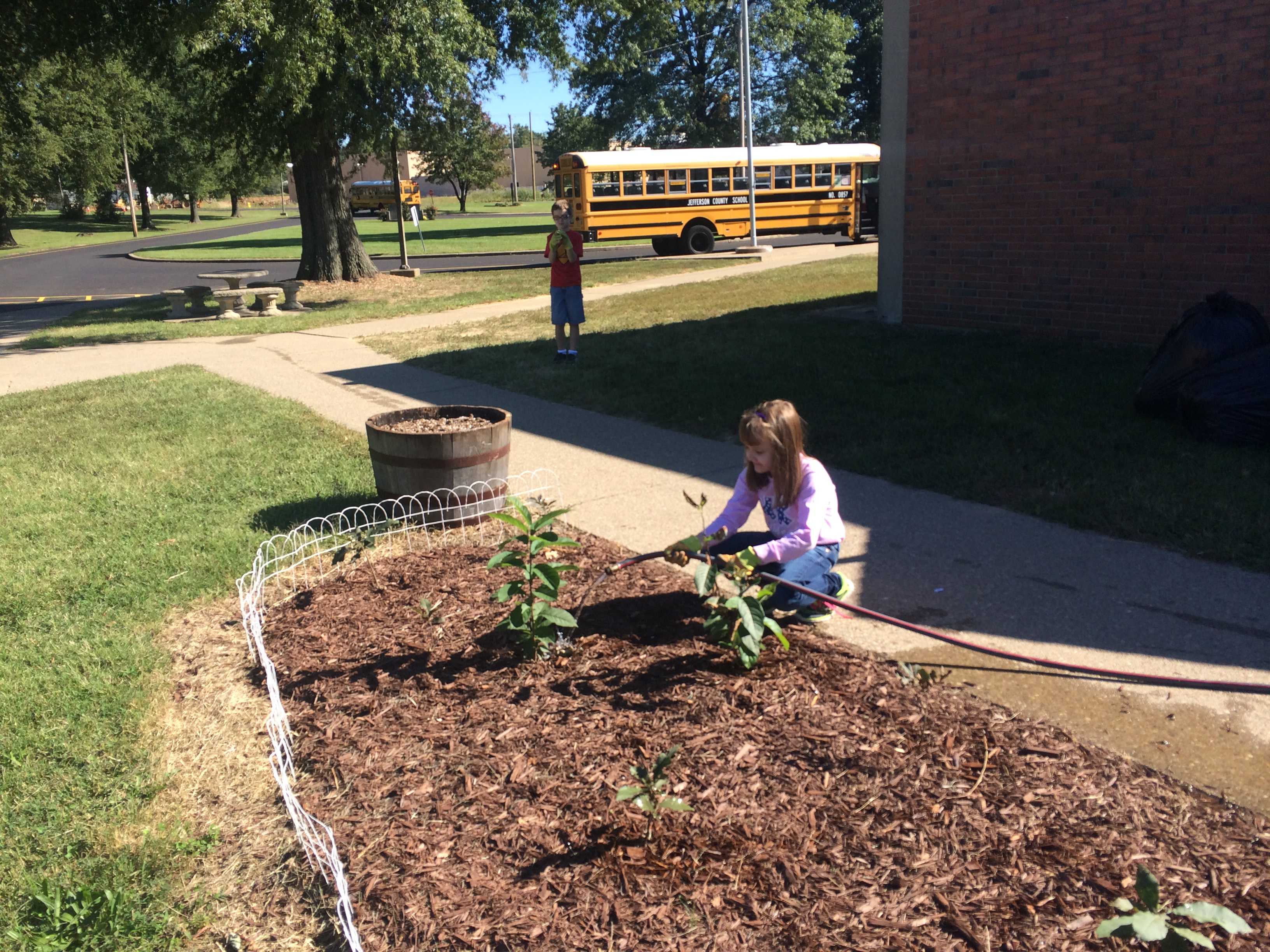 One student watering the plants so they can grow big and strong.